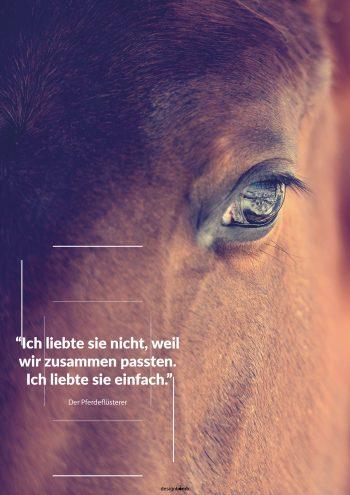 Der Pferdeflüsterer Poster